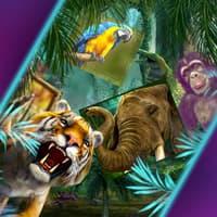 Jungle Slots Promo Pod