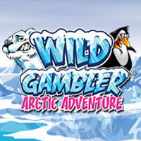 Slot Machine Wild Gambler 2