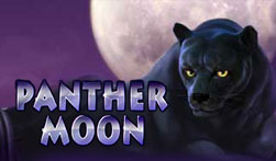 Panther Moon Slots Online